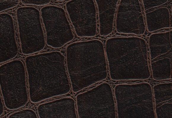 Everglades Dark Brown
